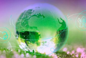 Cimiciurri - Gen Z e sostenibilità